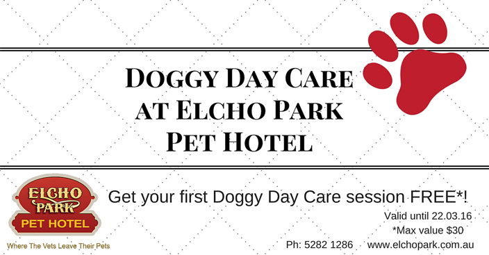 doggy care