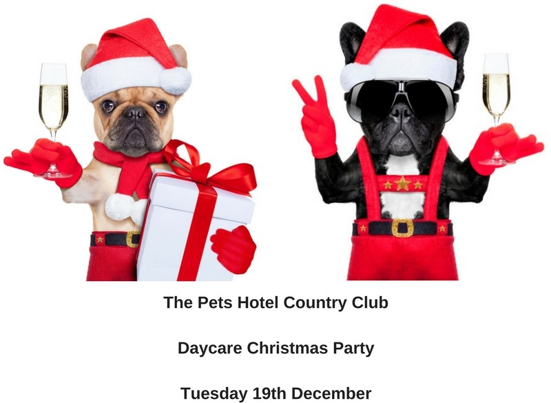 The Pets Hotel Country Club Daycare Christmas PartyTuesday 17th December 1