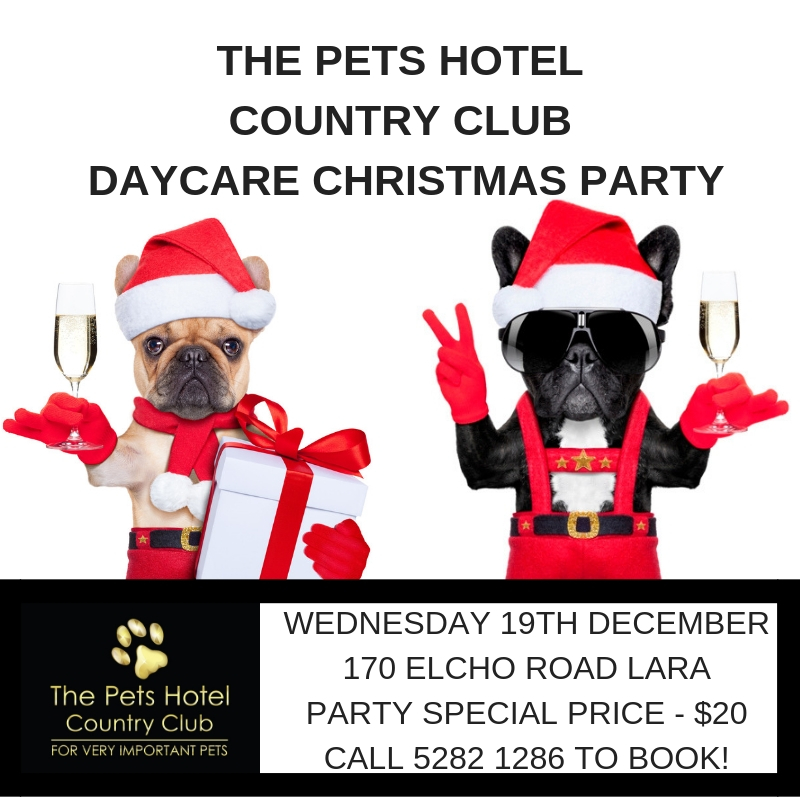 The Pets Hotel Country Club Daycare Christmas PartyTuesday 17th December