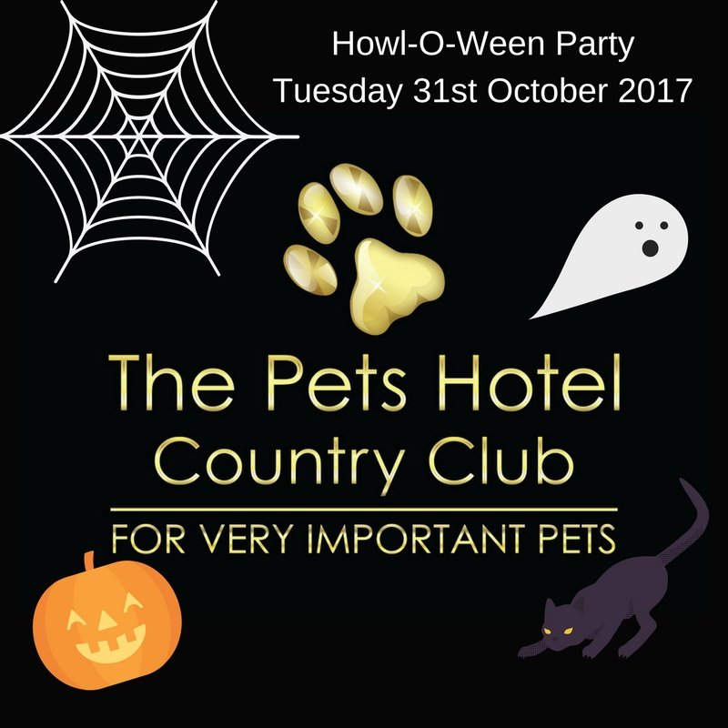 Howl-O-Ween PartyTuesday 31st October 2017